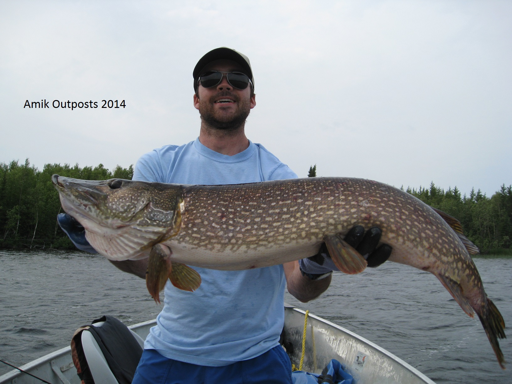 Cherrington lake trophy fish 2014 canadian fly in fishing for Canadian fly in fishing