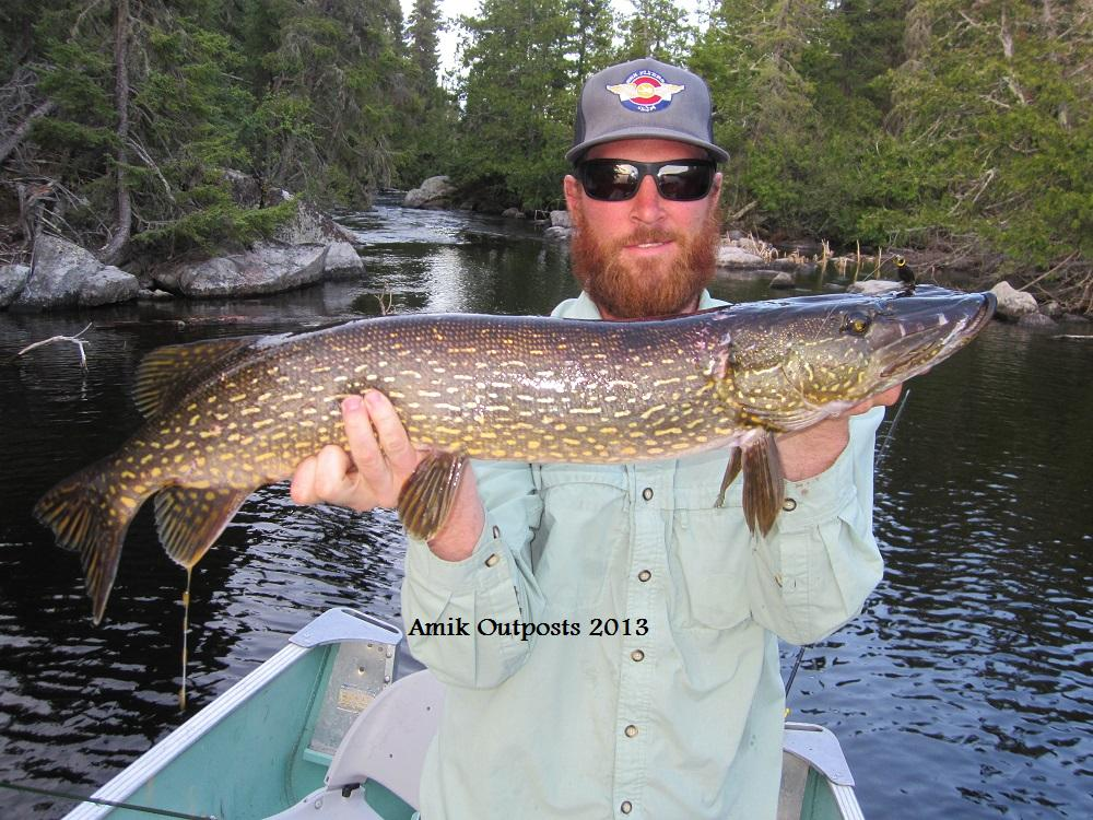 Jeanette lake trophy fish 2013 canadian fly in fishing for Canadian fly in fishing