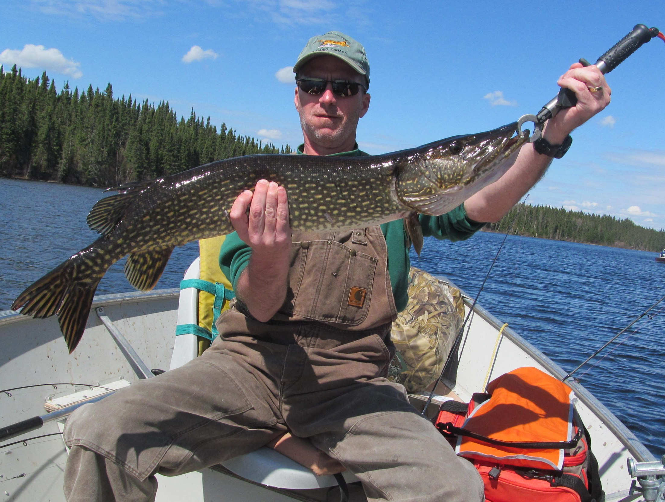 Loree lake trophy fish 2013 canadian fly in fishing for Canadian fly in fishing