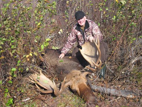 john blog moose