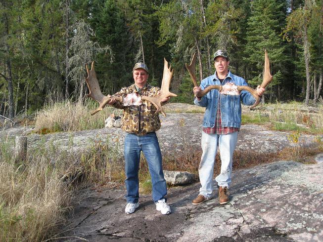 moose blog