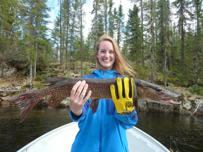 The rookie, Taylor, had a lot of fun and really enjoyed her first trip to the bush.  Catching lots of fish, she couldn't use her beginners luck to catch the biggest fish this time.